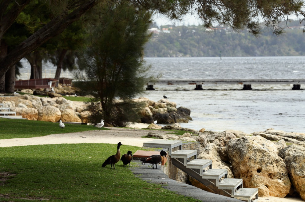Volunteer groups to be called on to enhance Swan and Canning river foreshores