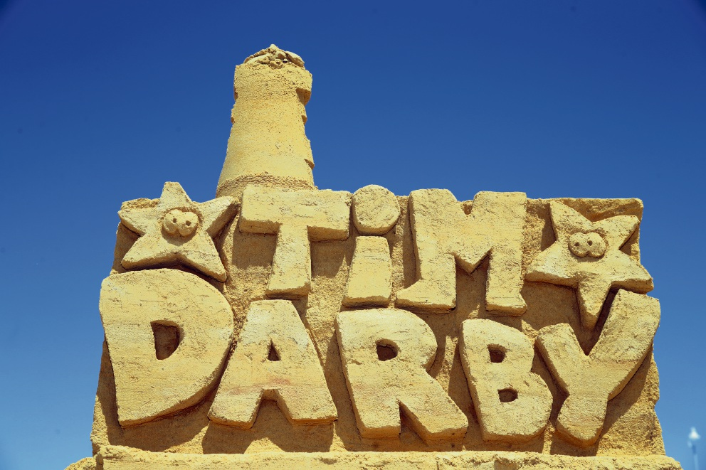 Tim Darby's sea life sand sculpture. Picture: Martin Kennealey d475699