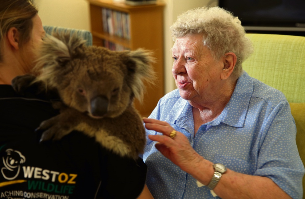Bethanie Kingsley resident Margaret Turner with Judah. Picture: Martin Kennealey d475107