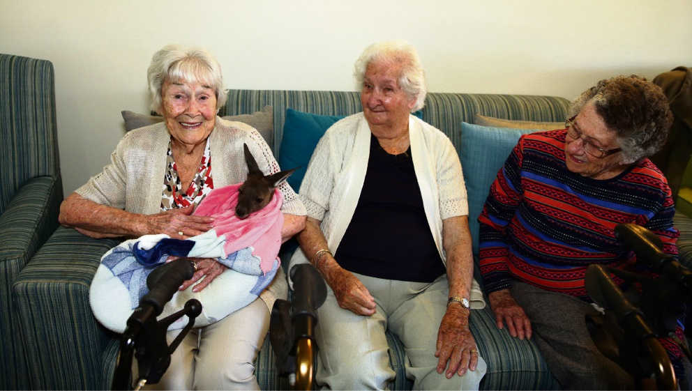 Bethanie residents Elsie Brindle, Lesley Johnson and Beryl Foley with Luna. Picture: Martin Kennealey d475107
