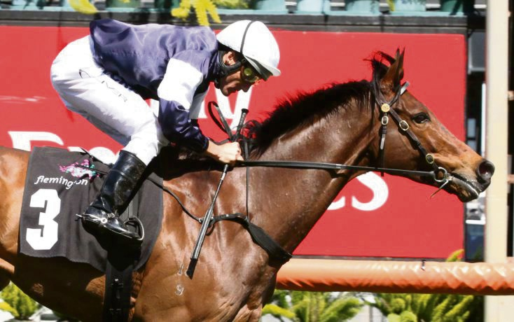 Melbourne Cup preview: can Almandin make it two in a row?