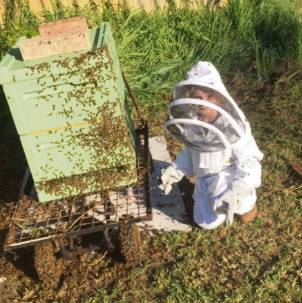 Amari is a seven-year-old beekeeper.