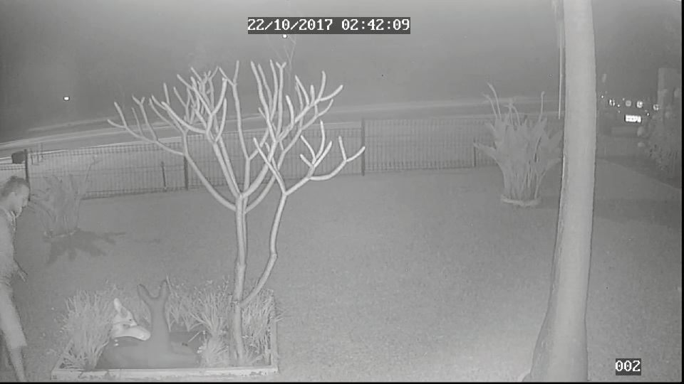 The CCTV footage of the men and the vehicles involved in the theft.