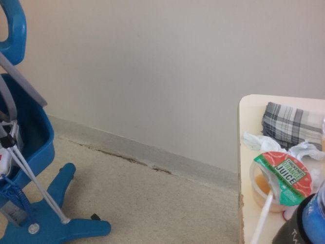 Patient raises mould concerns at Peel Health Campus