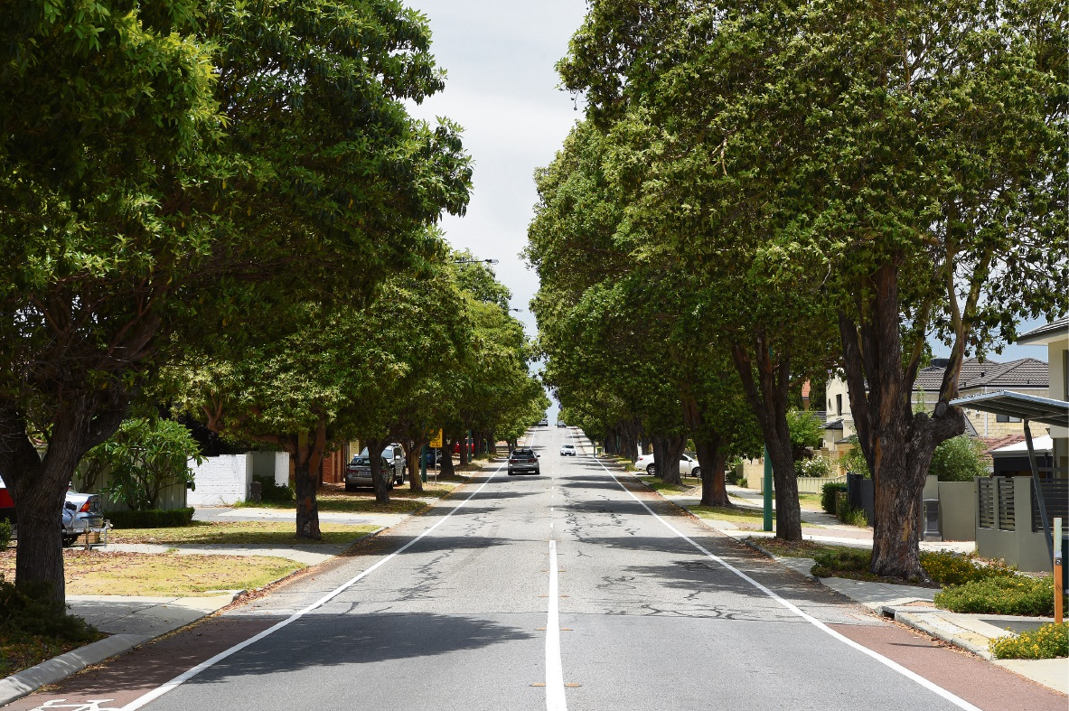 City of Melville will commence road works on Reynolds Road from Bombard Street to Crest Avenue. Picture: Jon Hewson d476895