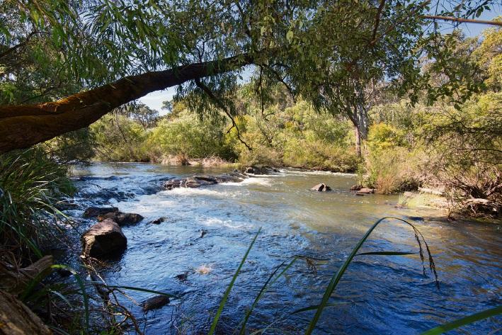 Margaret River, 5903 Caves Road – $2.495 million