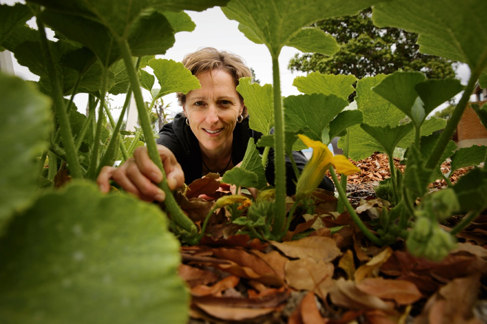 Maylands gardener thrilled to bits with best veggie garden award