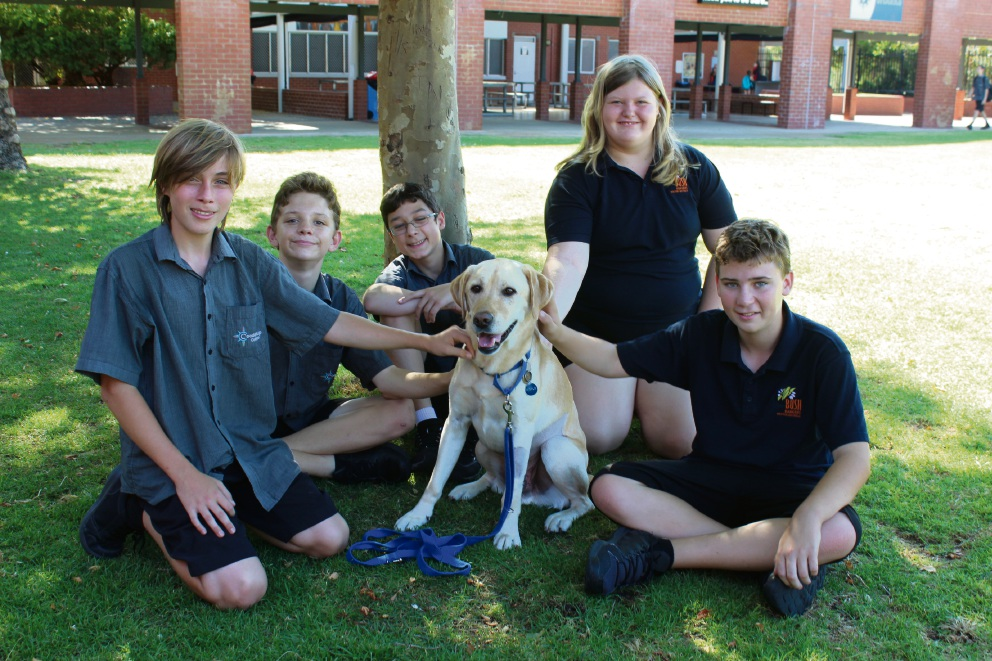 Year 7 students Ethan Grimshaw, Hayden Barndon, Brock Nicholls, Sarah Marshall and Leon Price welcoming Justus back after surgery.