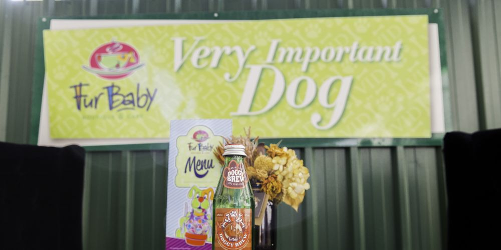 FurBaby Cafe's Dog Beer. Picture: Richelle Beswick Photography