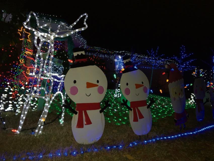 Clarkson resident's Christmas lights helping sick children
