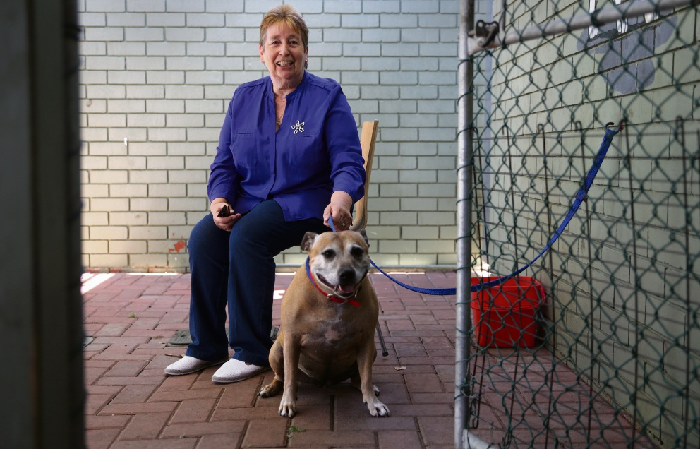 Wanneroo Councillor Dot Newton with Millie. Picture: Martin Kennealey d478041