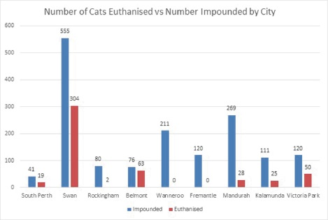 City of Belmont says most of the cats put down in past year were feral