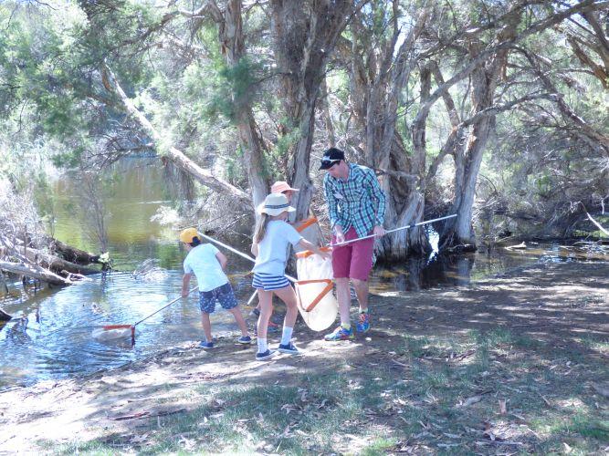 Children's freshwater life scooping activities at Herdsman Lake Wildlife Centre.