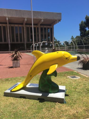A dolphin outside the Perth Concert Hall promoting The Big Splash.