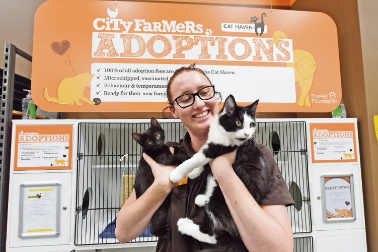 Krystal Eaton (Assistant Store Manager)Cats L to R -