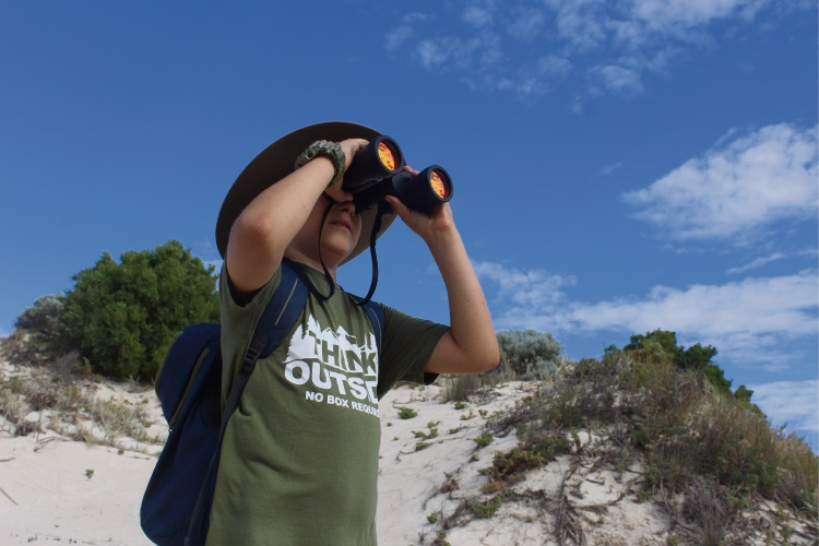 Looking for birds in the sand dunes at Tamala Conservation Park. Photo: D. Wake.