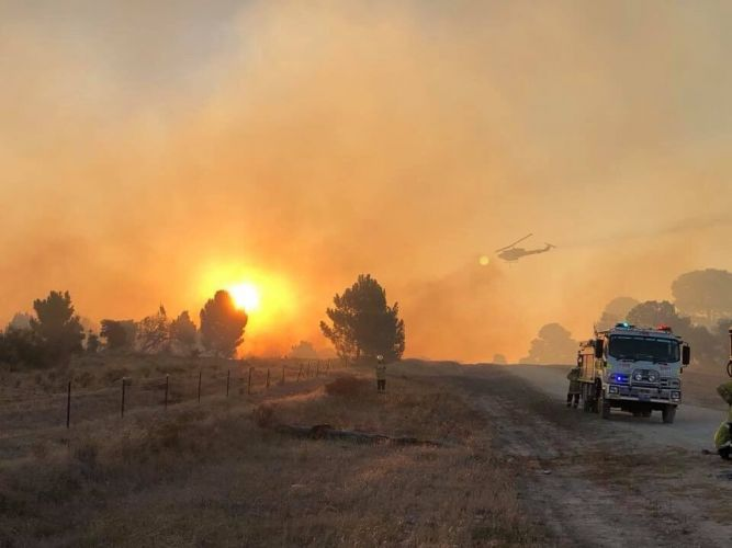 Firefighters at the scene of the fire in the southern part of the Gnangara pine plantation last week. Picture: DFES/Twitter.