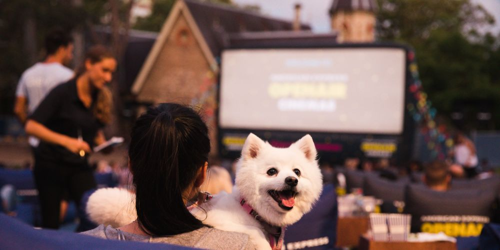Dogs are permitted at Openair Cinema in East Perth.