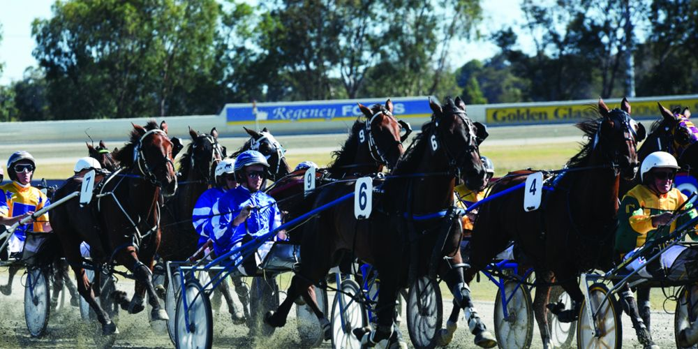 Pinjarra Pacing Cup set to be Peel Region's biggest and best day at the trots