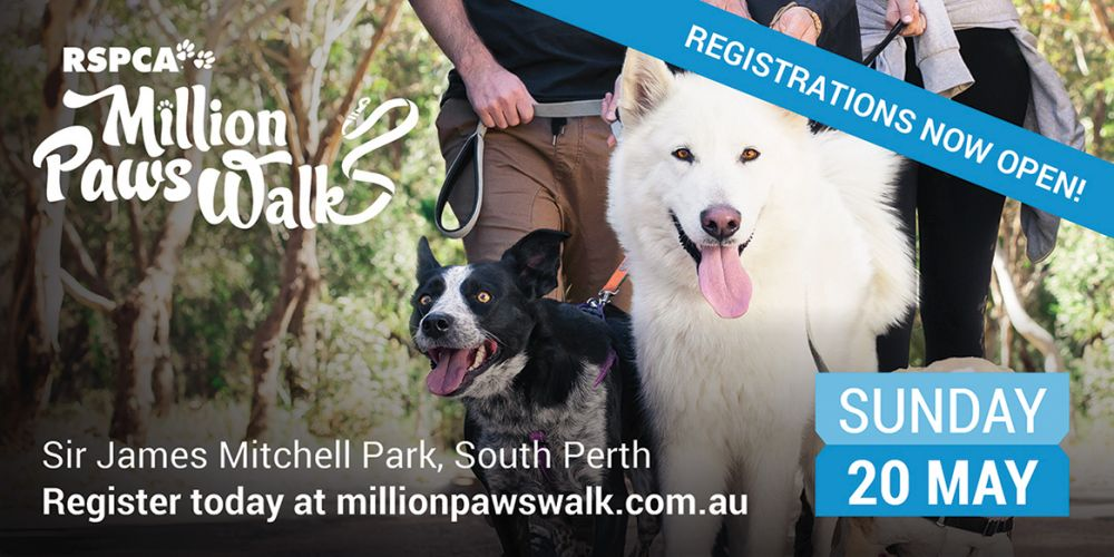 RSPCA Million Paws Walk 2018