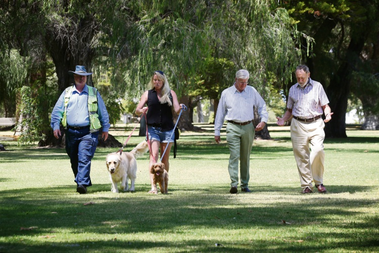 Mayor Max Hipkins, with poodle Meg, Claremont Mayor Jock Barker, leading labrador Archie, Claremont ranger Dennis Maher and trainer Neri Karazija have control of Pets in the Park. Picture: Andrew Ritchie