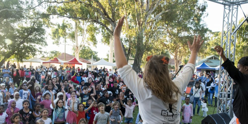 The crowd at last year's Harmonise Cultural Festival.