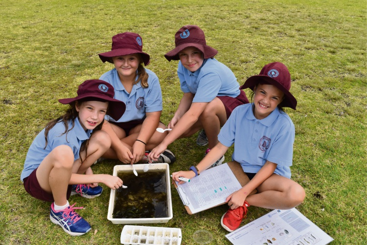 Bayswater Primary School Year 4 students Sophie Hamer, Alexis Metcalfe, Phoebe Bath and Ayla Harris. Pictures: Kristie Lim