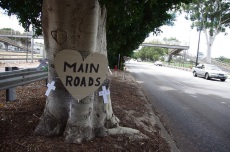 Protest signs placed on trees on Guildford Road. Pictures: Carol Siedel