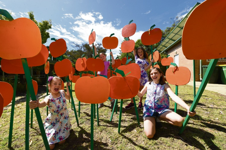 The Dwellingup Pumpkin Festival is an example of successful funding. Photo: Jon Hewson