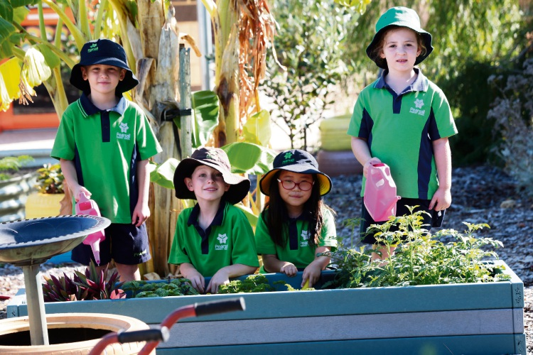 Pearsall Primary School students Milan Danilovic, Ash Evans, Hailey Kim and Leah Hulse. Picture: Martin Kennealey.