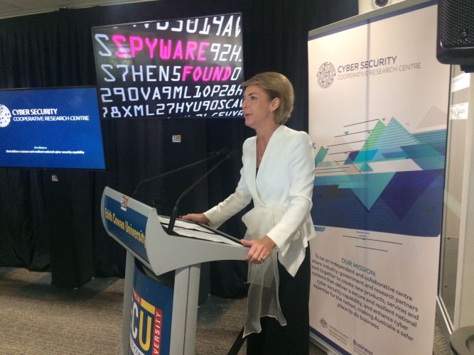 Federal Minister for Jobs and Innovation Michaelia Cash. Picture: Bruce Hunt