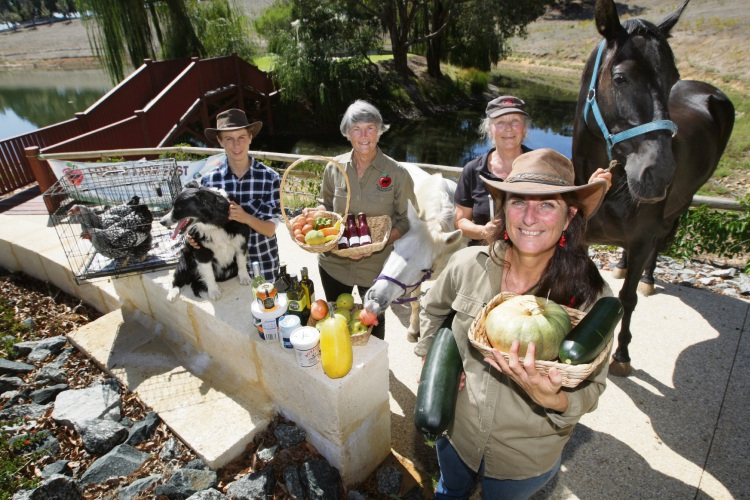 (L-R) Angus Easton-Hayes, Merri Harris, Margaret Cala and (front) Karen Hayes with dog 'Dustie-Rose, horses (L-R) George and Leeda are gearing up for the Serpentine Jarrahdale Food and Farm Fest. Photograph: Bruce Hunt.