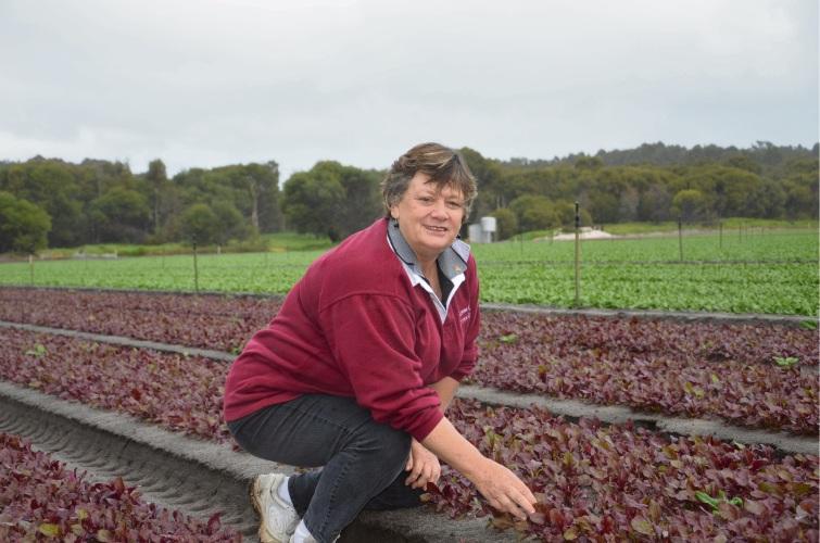 Maureen Dobra from the Loose Leaf Lettuce Company.