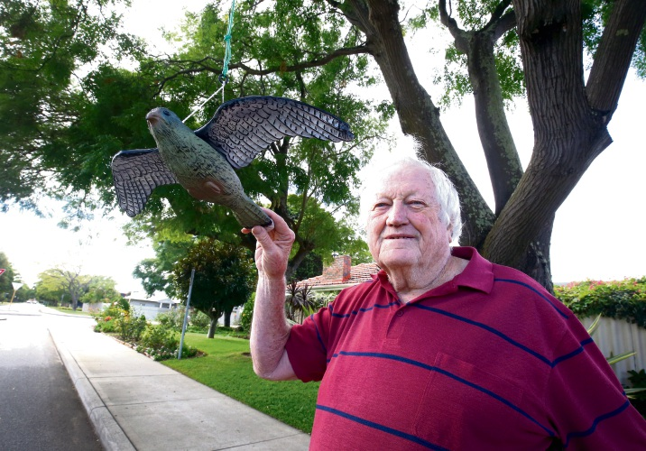 The $13 deterrent Reg McLevie has implemented to keep hungry red-tailed black cockatoos away from a cape lilac tree out the front of his Applecross home.