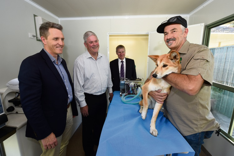 Fremantle MHR Josh Wilson, Cockburn Mayor Logan Howlett, BP Kwinana refinery manager Brett Swayn and Native Arc chairman Bob Dunn with Bindi, one the two alpine dingos at the new exhibit.   Picture: Jon Hewson www.communitypix.com.au   d481963