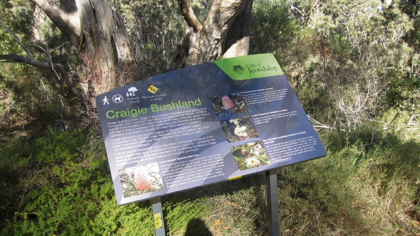 Public consultation is open for the draft Craigie Bushland Management Plan.
