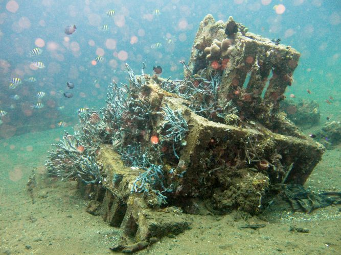Artificial reef in Indonesia. Picture: iStock