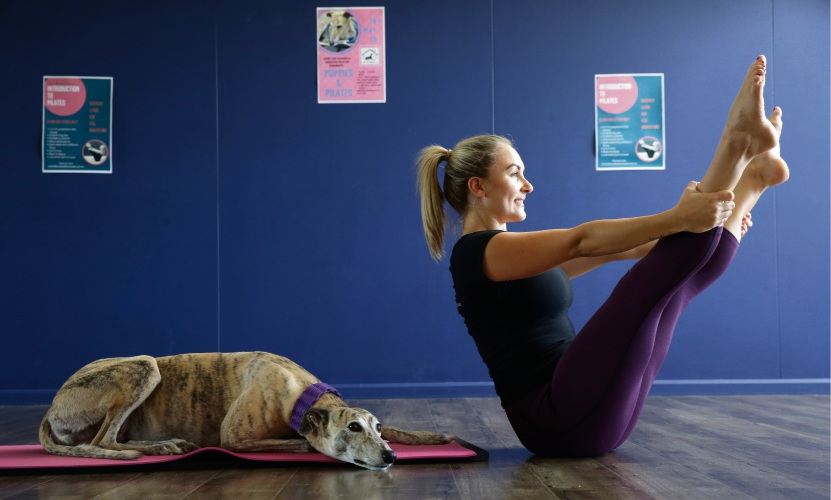 Puppies and Pilates event in Wangara to raise funds for Greyhound Adoptions WA