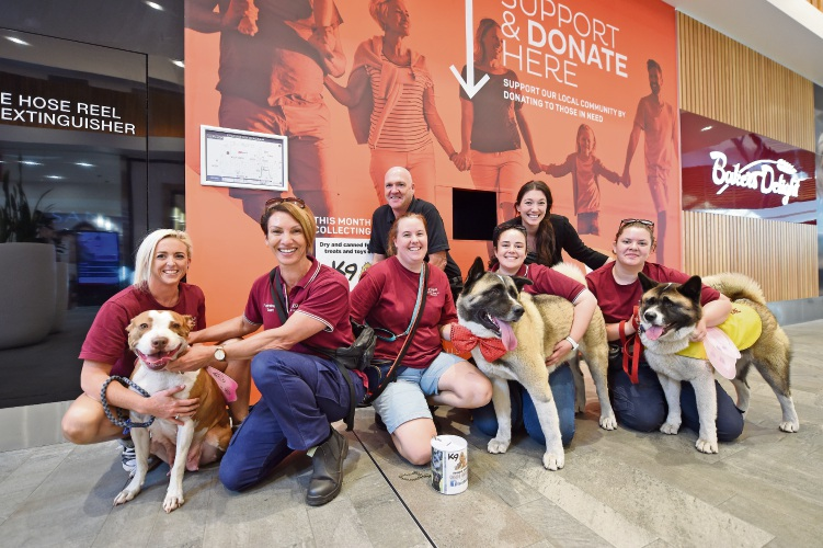 Halls Head Central operations manager Jason Rose, Taryne Macdonald, volunteers Coz Bass, Leonie Mischewski, Megan Goddard, Elayne Wilson and Andrea Wilson with China, Kenta and Jaala at the launch of the donation wall. Picture: Jon Hewson d482936