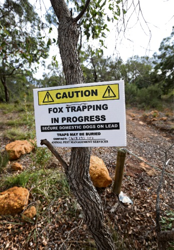 Fox trapping signs on tracks off Snowball Road in the Mundy Regional Park in Kalamunda. Photo: David Baylis.