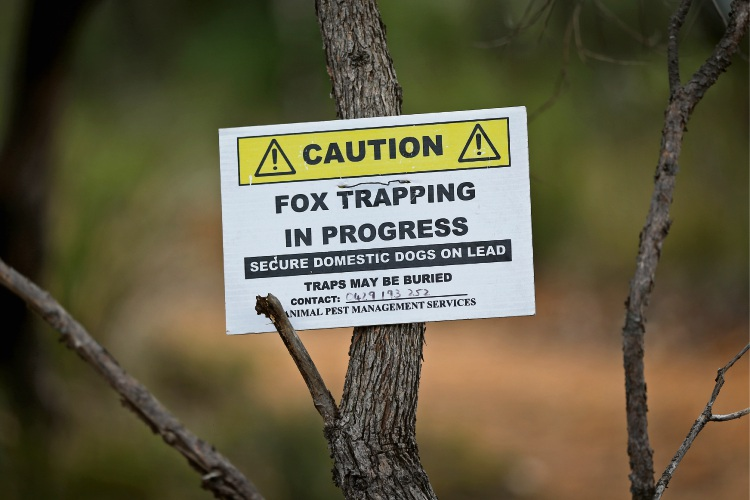 Signs and traps have been removed from local reserves in the City of Kalamunda.