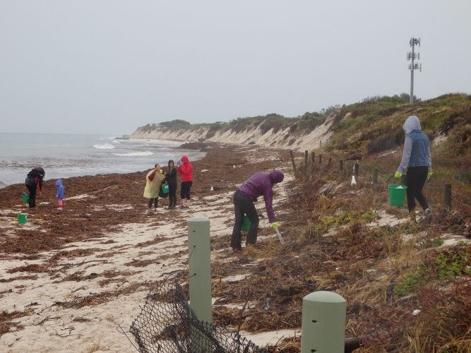 Keep Australia Beautiful WA and the Coastal Cleanup Crew were at Hillarys Beach.