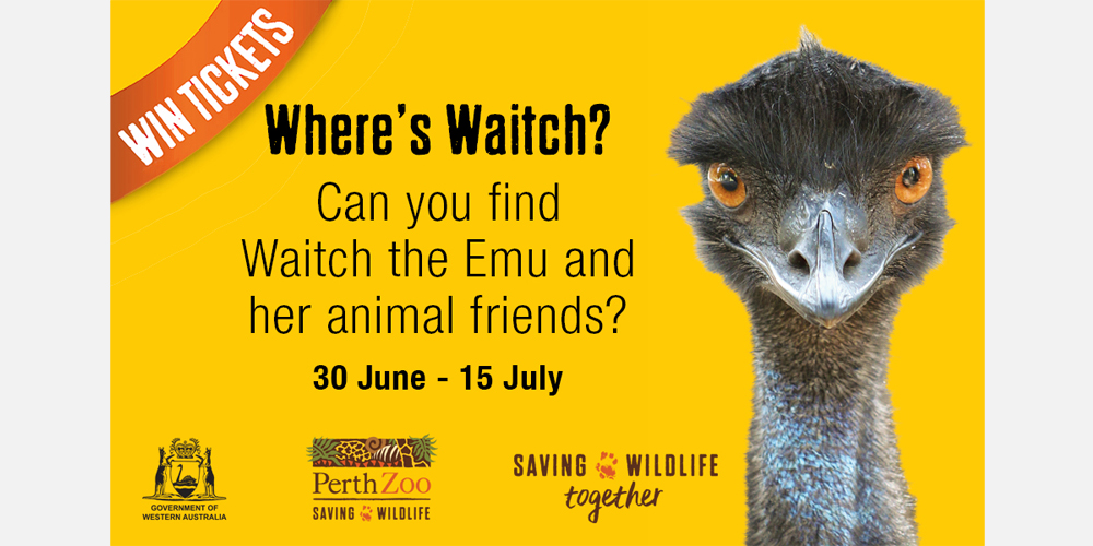 Win 1 of 85 family passes to Perth Zoo
