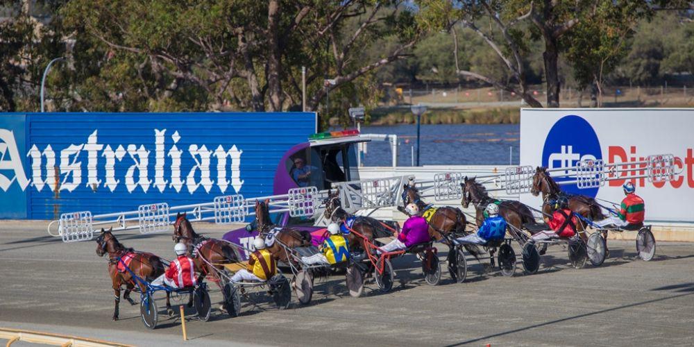 Pinjarra harness racing meets to have 8-week trial of new mobile barrier speed