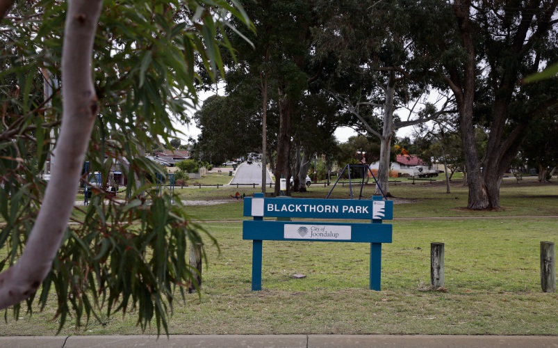 Blackthorn Park in Greenwood could have its name changed.