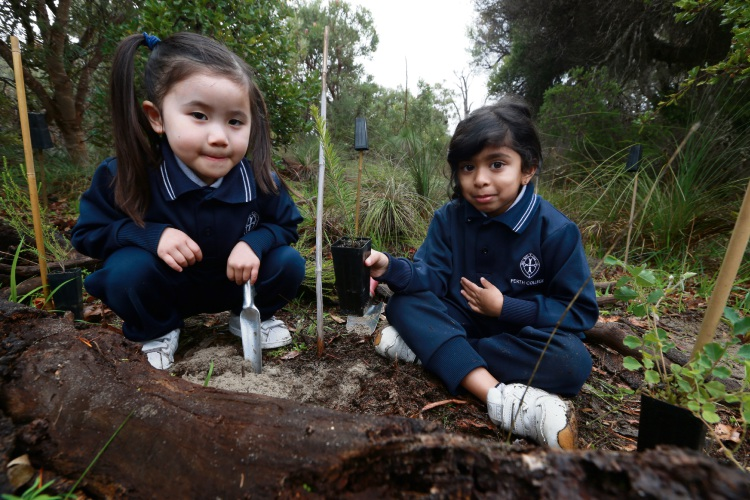Elizabeth Ham and Dayita Heerasing, Perth College kindy girls are planting more than 600 tress in the reserve with the Friends of Inglewood Triangle.