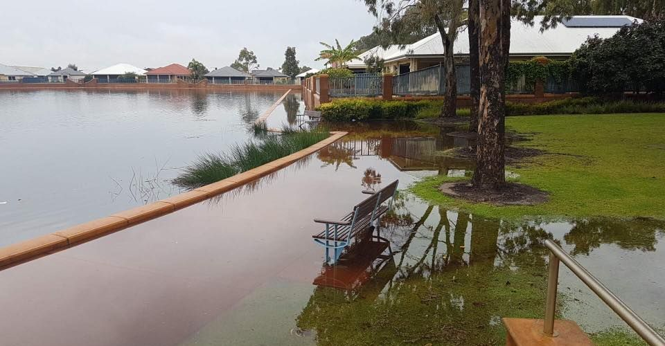 Baldivis MLA Reece Whitby's photo of The Rivergums, flooded, in Baldivis this afternoon.