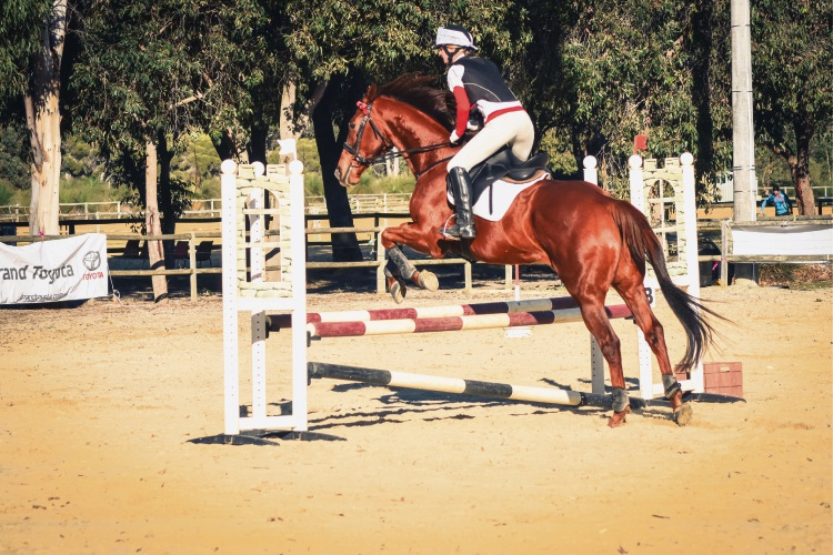 Lucinda Boulter completing her showjumping round. Photo: Courtney Reader Artistry