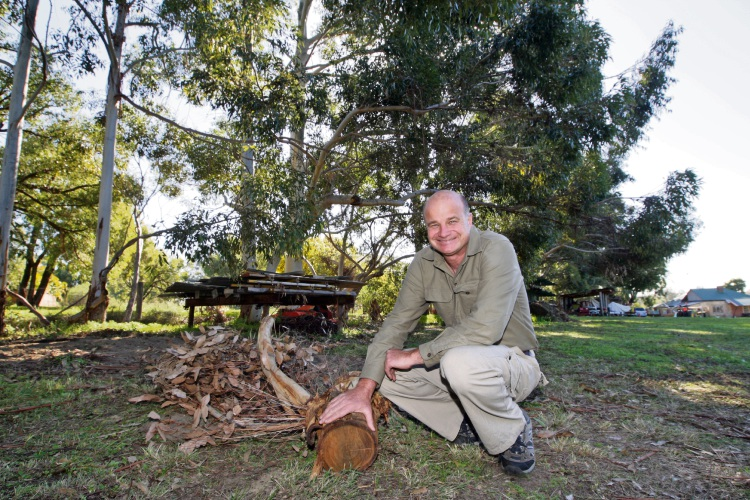 Nevan Pavlinovich in front of the mature trees he recently had valued for more than half a million dollars. Picture: Bruce Hunt.