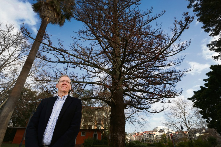 East Perth Community Safety Group Chairman Jeff Broun with the 141-year-old tree in East Perth. Picture: Andrew Ritchie.